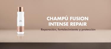 Fusion Intese repair